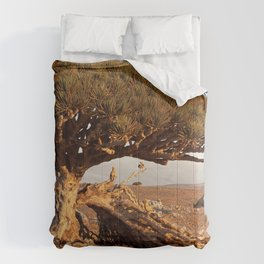 Socotra — dreams of the Lost Paradise Comforters