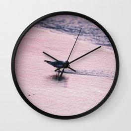 Plover at Sunrise (Sea Birds) Wall Clock