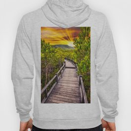Mangrove Forest Sunset Hoody