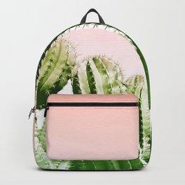 Wild Cactus from Desert Backpack