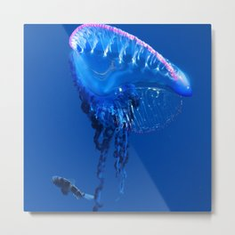 Fish and friend jellyfish Man O´War Metal Print