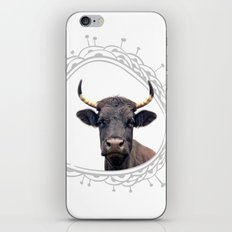 Yellow Horns iPhone & iPod Skin