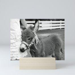 Girl and Baby Donkey Black and White Mini Art Print