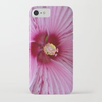 hibiscus iPhone & iPod Cases featuring Hibiscus by Veronica Ventress