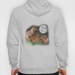 Three Moon Capybaras - Funny Cute Animal Parody Hoody