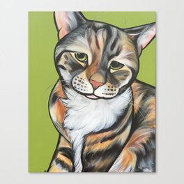 Kiwi the Kitty Canvas Print