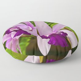 Cattleya Orchid Floor Pillow