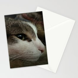 Alistair chilling Stationery Cards