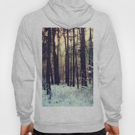 Winter landscape Hoody