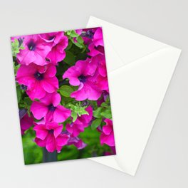 Beautiful pink petunias Stationery Cards