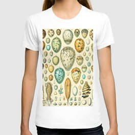 Reptile and Bird Egg Vintage Illustration Drawing by Adolphe Millot of Artsy Colored Oval Eggs T-shirt