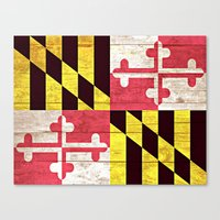maryland Canvas Prints featuring Maryland by C Liza B