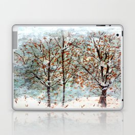 Snow Storm up Dewdrop Holler Laptop & iPad Skin
