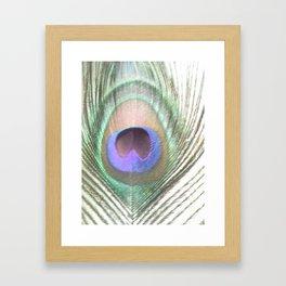 PEACOCK FEATHER III Framed Art Print