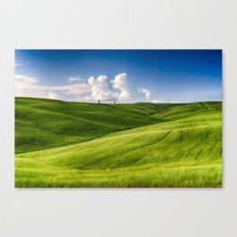 Rolling Hills with Cypress Trees Canvas Print