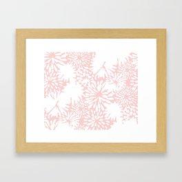Rose Zinnia Framed Art Print