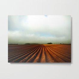 NRW Potatoe Fields Metal Print