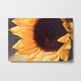 SunFlower (1) Metal Print