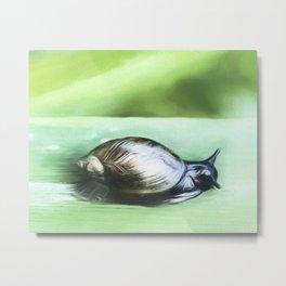 Little Snail Metal Print