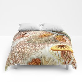 SEA CREATURES COLLAGE-Ernst Haeckel Comforters