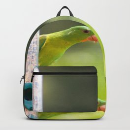 green parrots Backpack