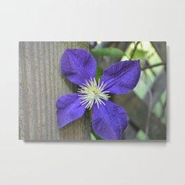 Fency Flower Metal Print
