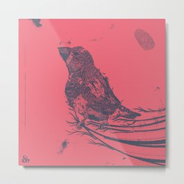Finch Origin of Species Metal Print