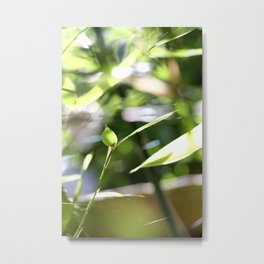 The lightness of bamboo Metal Print