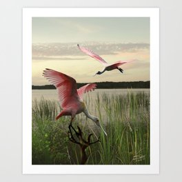 The Spoonbills of Lake Saint George Art Print