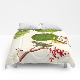 Pine Swamp Warbler Bird Comforters