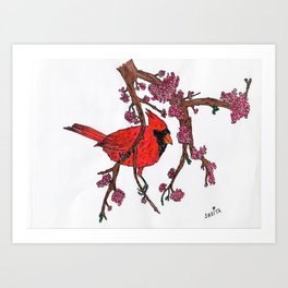 Cardinal on Redbud Branch Art Print