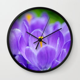 Group of blue crocuses Wall Clock