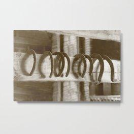 Horseshoes Metal Print