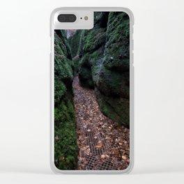 Drachenschlucht Gorge Clear iPhone Case