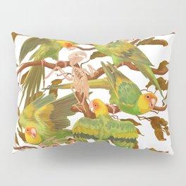 The extinction of the Carolina Parakeet. Pillow Sham