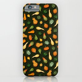 Ornamental Gourds for Autumn, Fall, Thanksgiving iPhone Case