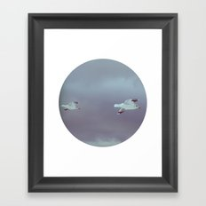 2 seagulls Framed Art Print