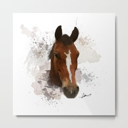 Brown and White Horse Watercolor Metal Print
