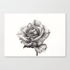 Marilyn Monroe tea Rose Canvas Print