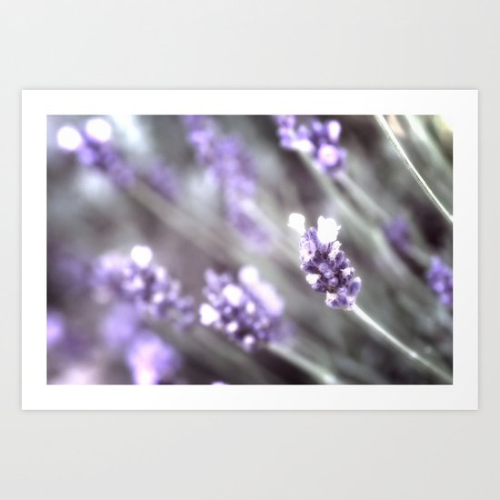 Purple shades of gray Art Print
