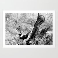Twisted Roots Art Print