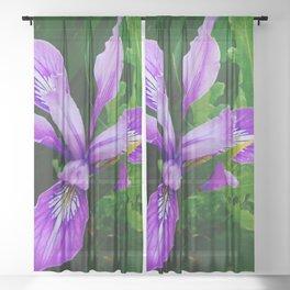 Wild Purple Iris Sheer Curtain