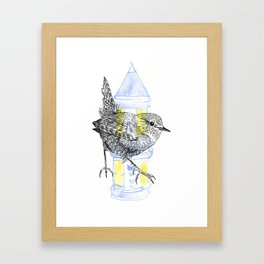 Urban Wren Framed Art Print