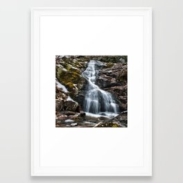Despite the Season Framed Art Print