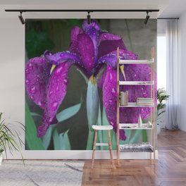 Sacred Trilogy: Water Irises Wall Mural