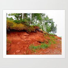 Under the Trees in PEI Art Print