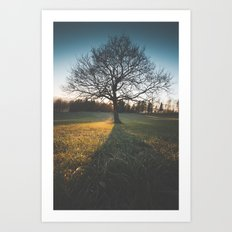 Lonely tree Art Print