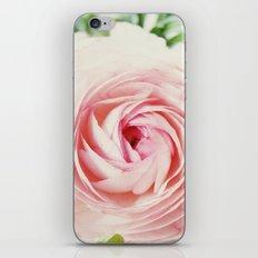 Pink Ruffles iPhone & iPod Skin