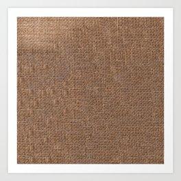 Canvas texture Art Print