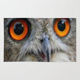 Owl Close up Rug